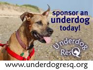 Underdog ResQ