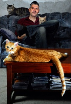 paul-and-3-cats